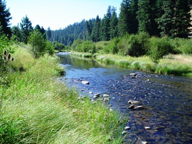 The Middle Fork of the John Day River